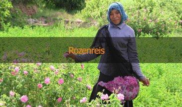 Familiereizen Marokko-Rozenreis
