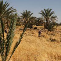 marokko-966-min