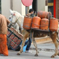 dades-reizen-individueel-fes-zuiden-marrakech