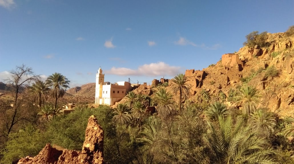 Road trip Marokko- Anti Atlas Tafraoute