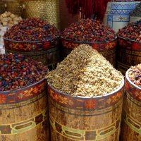 dades-reizen-individueel-marrakech-atlas-essaouira-3