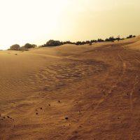 dades-reizen-individueel-woestijnexcursies-2